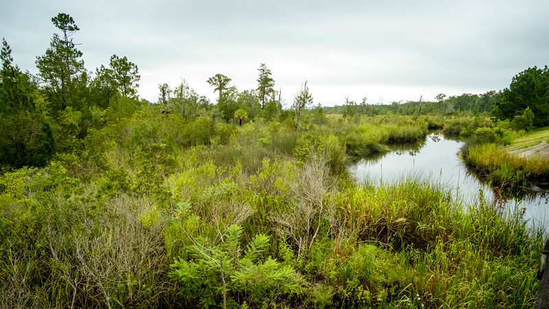 Catfish Creek is a tributary of the Saint Marys River