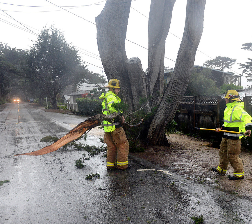 . Firefighters clear cyprus limbs that snagged cable lines in Carmel as a large storm brings strong winds and rain to Monterey County on Sunday January 8, 2017. (David Royal - Monterey Herald)