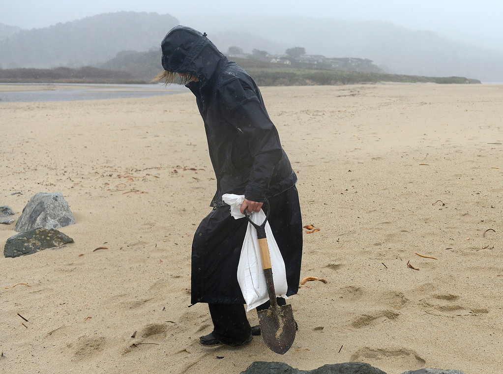 . A woman carries sandbags she she filled at Carmel River State Beach in Carmel as a large storm brings strong winds and rain to Monterey County on Sunday January 8, 2017. (David Royal - Monterey Herald)