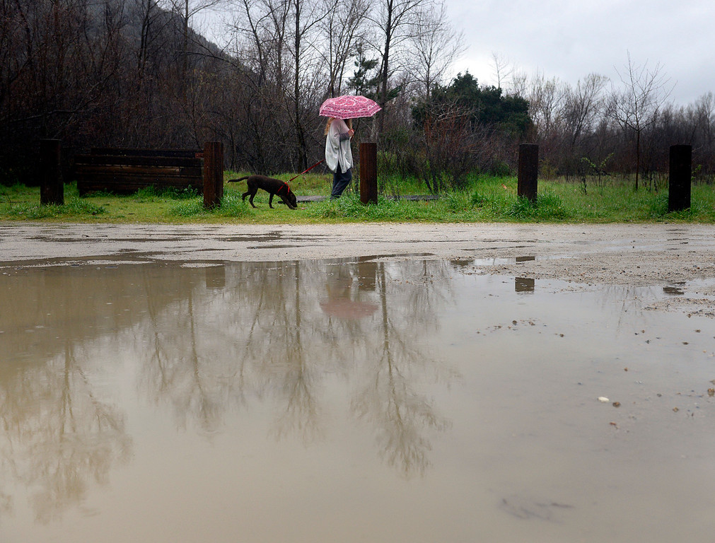 . Paso Hondo neighborhood resident Kristan Roth walks her dog Delilah past a large puddle at Dampierre Park in Camel Valley after taking a look at the rising Carmel River on Tuesday afternoon February 7, 2017. (David Royal - Monterey Herald)