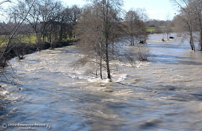Fast moving muddy water is seen in Butte Creek, widened by the storm near the Oro Chico Rd. bridge in Chico, Calif. Wed. Jan 11, 2017. (Bill Husa -- Enterprise-Record)