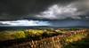 Malverns & Storms  (11 of 48)