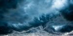 Storm Curl
