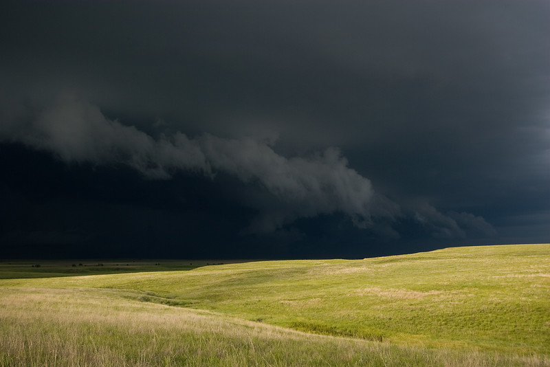 Shelf Cloud and Wheat Field