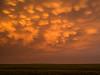 Mammatus at Sunset, Western Kansas