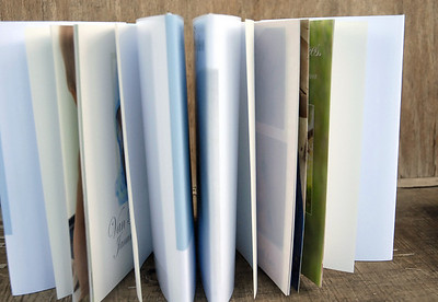 7x7 Coffee Table Books for All Occasions