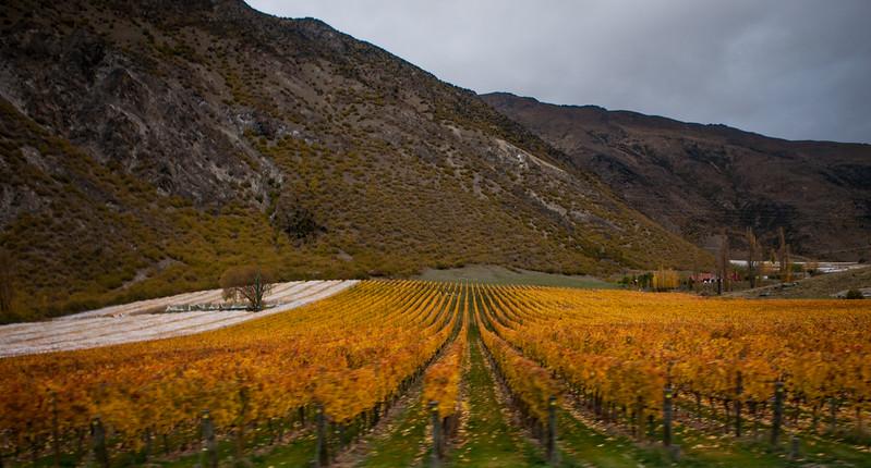 Cromwell, New Zealand
