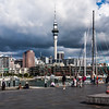 View of the sky tower at the Viaduct in Auckland, New Zealand