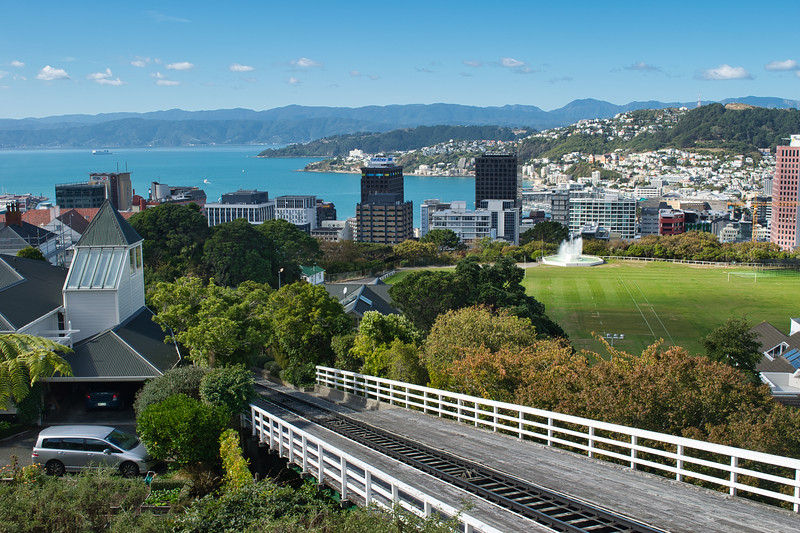 View of the Wellington city from the Botanical gardens, New Zealand