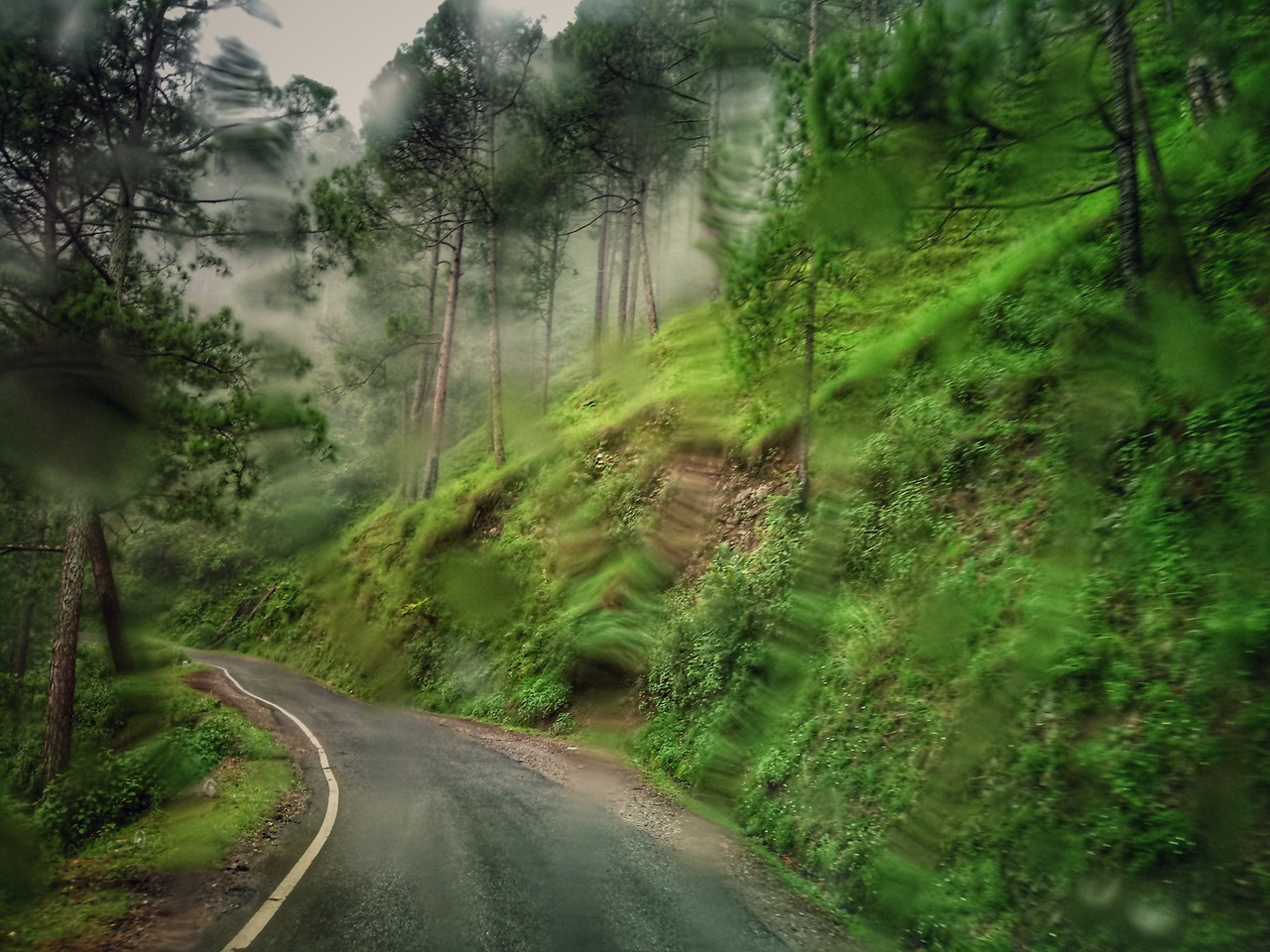 The route from Dehradun to The Goat Village in Dayara Bugyal, Raithal in Uttarakhand