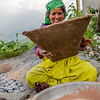 Woman from Raithal separating the husk of the recently harvested brown rice of the Himalayas