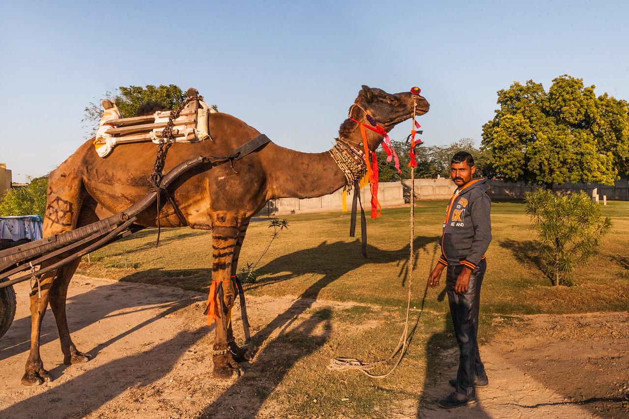 Saffronstays Jaipura Garh, Jaipur, India