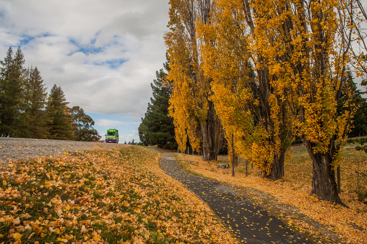 On the way to Puzzle World, Wanaka, New Zealand