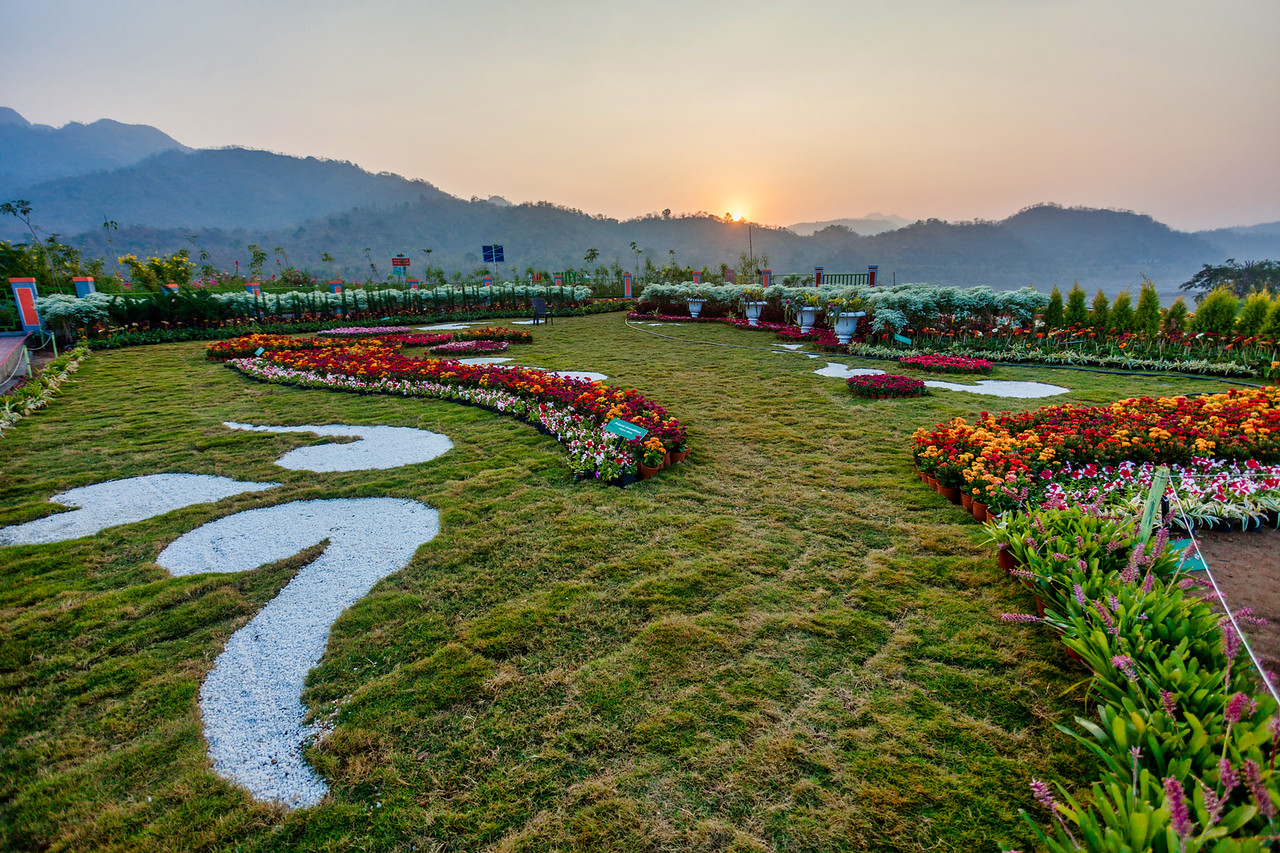 A Valley of Flowers, Kevadia, Gujarat, India