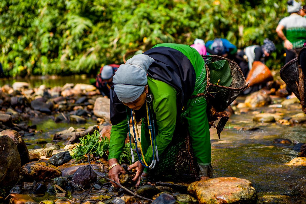 Traditional fishing at Basar Confluence, BasCon, Basar, Arunachal Pradesh, India