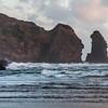 Lion Rock, Piha beach; New Zealand; Auckland