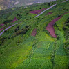 Terraced farming in Raithal, a village in the Garhwal Himalayas of Uttarakhand