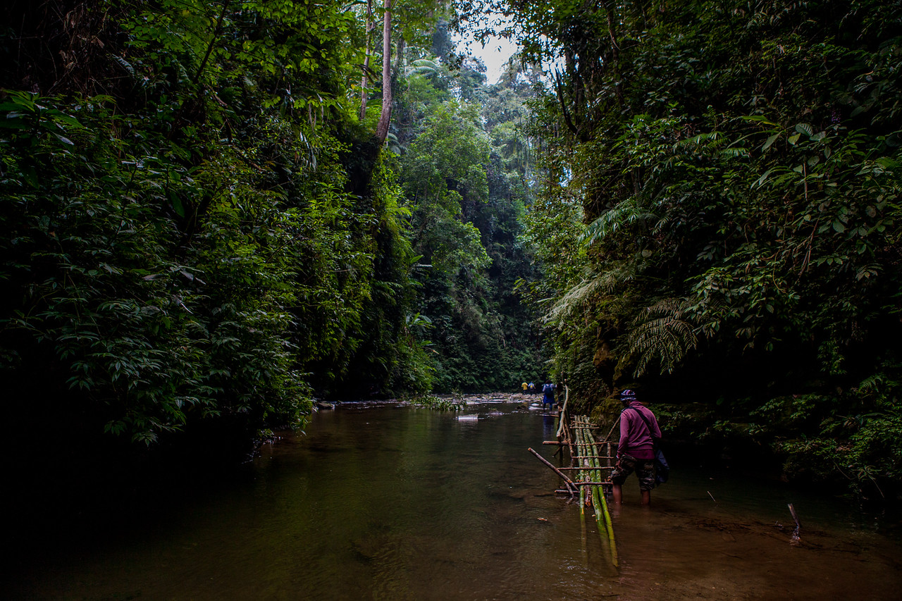 Trekking to Jooli, the haunted place during BasCon, Basar, Arunachal Pradesh, India