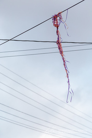 Ribbons from baloons caught on wires in the neighborhood.
