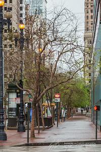Another view of Market Street's quite sidewalks.