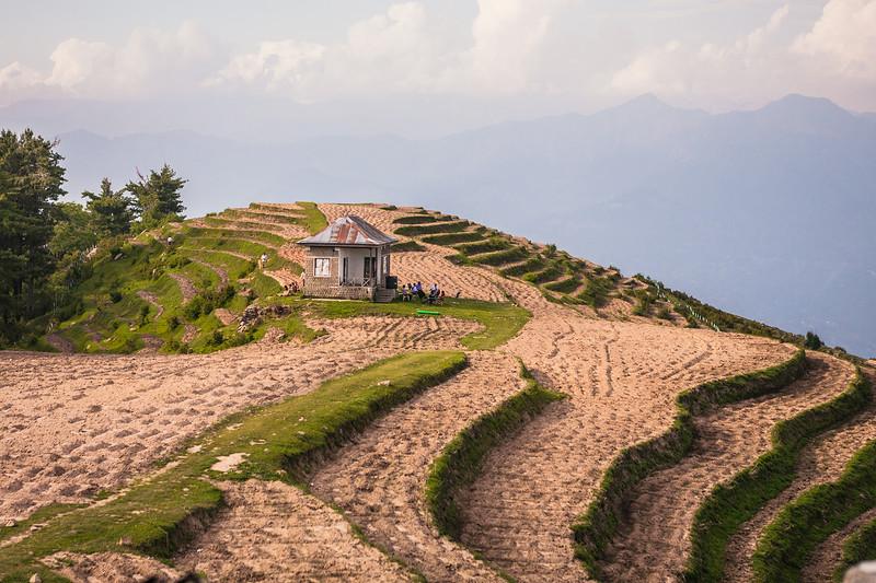 Terrace farms at Sanasar, Jammu, India