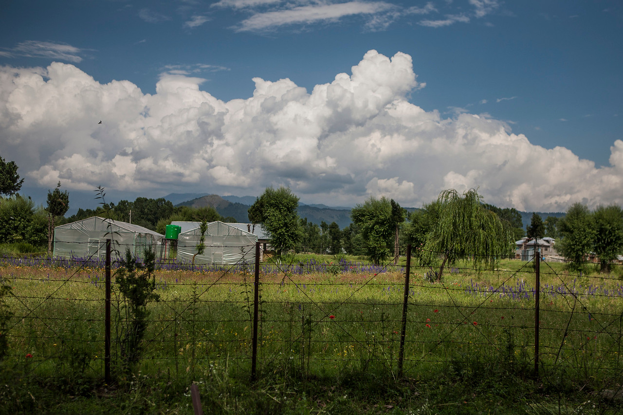 Horticulture farms on the way to Verinag, Kashmir