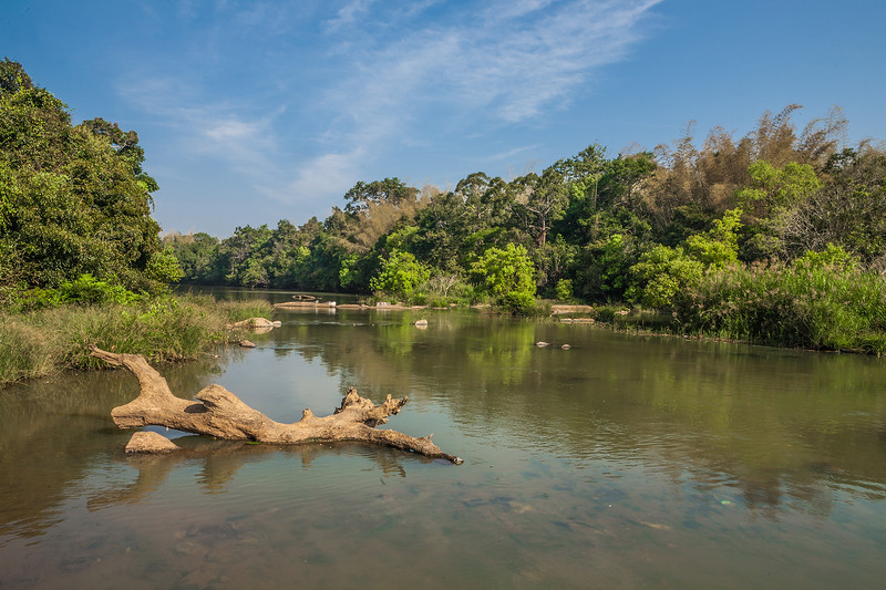 Landscape around Cauvery river in Coorg, Karnataka
