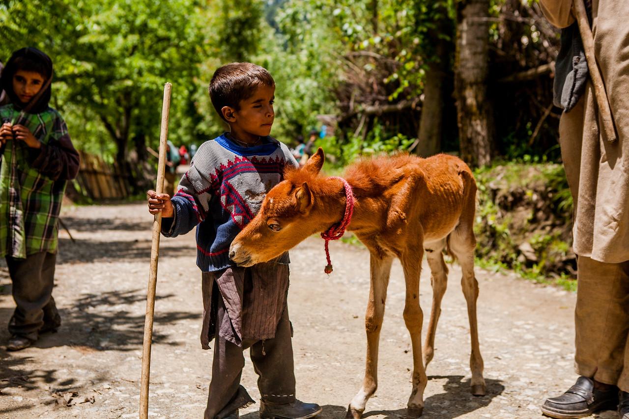 Chatpal, Kashmir, India