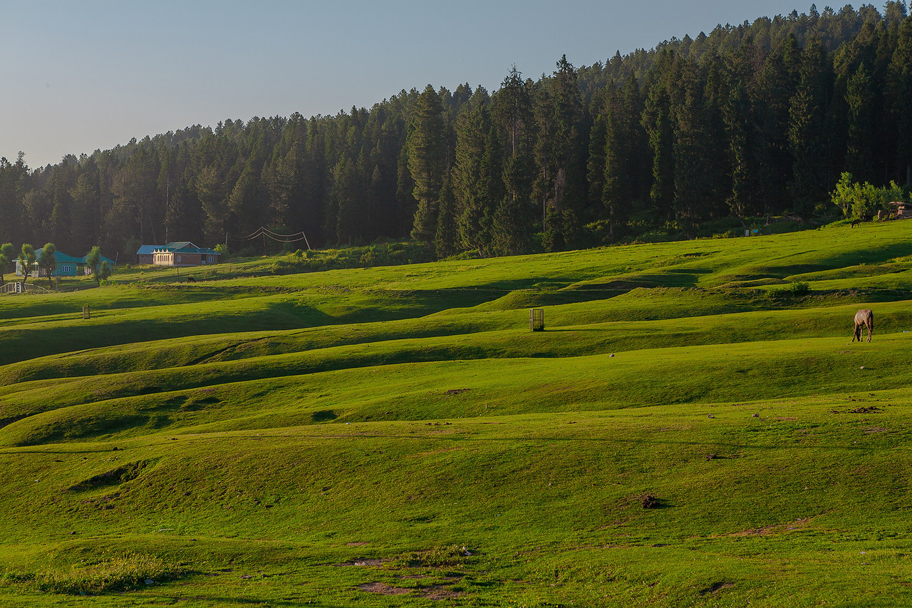 Yusmarg, Kashmir, India