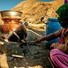 Homemade liquor in Zanskar, India