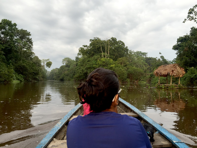 Boating along the Yanayacu tributary of the Amazon river, Peru
