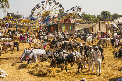 Rural Bazar of Rajur, Maharashtra, India