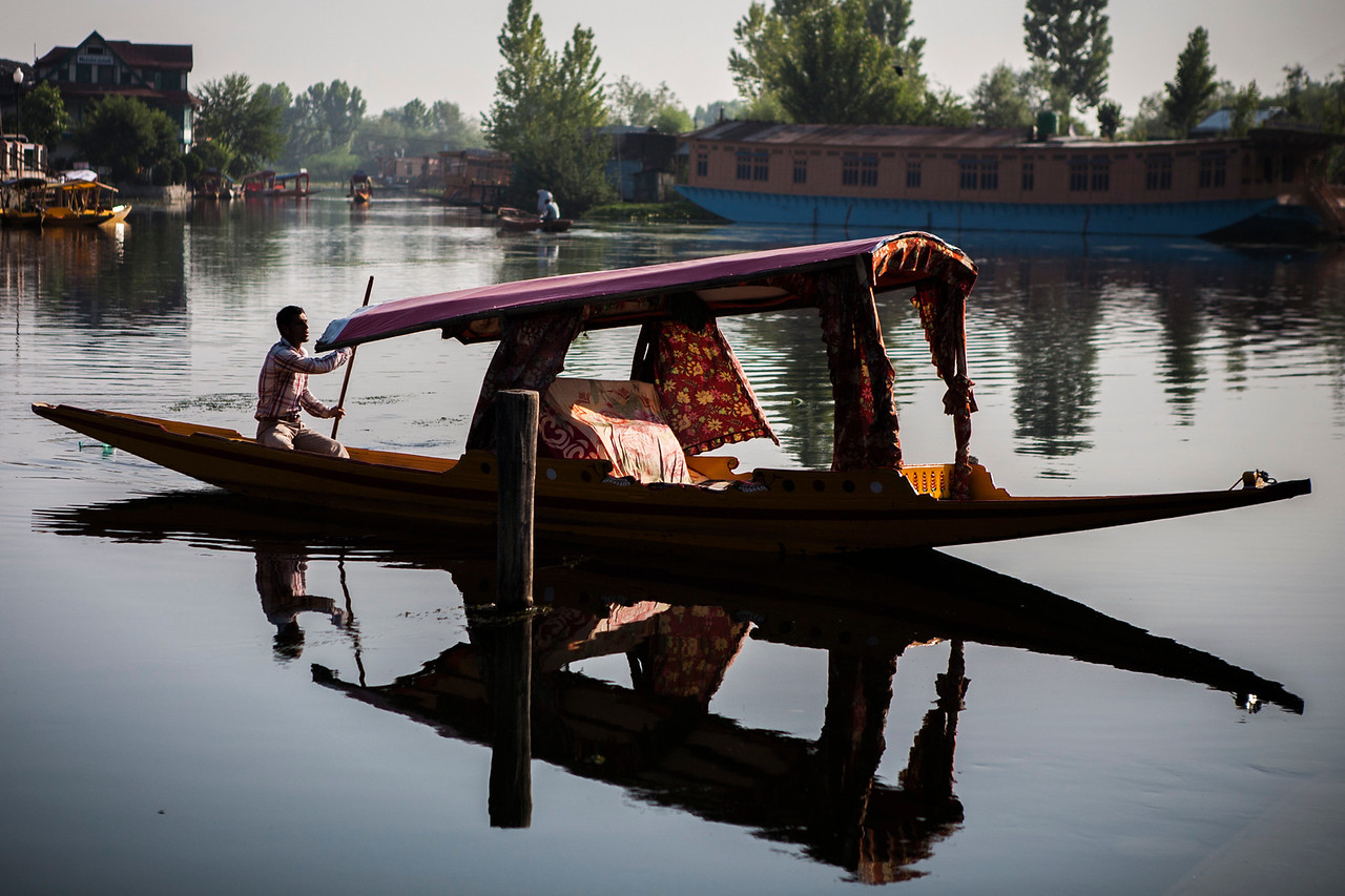 Shikaras at Dal lake in Srinagar, Kashmir, India