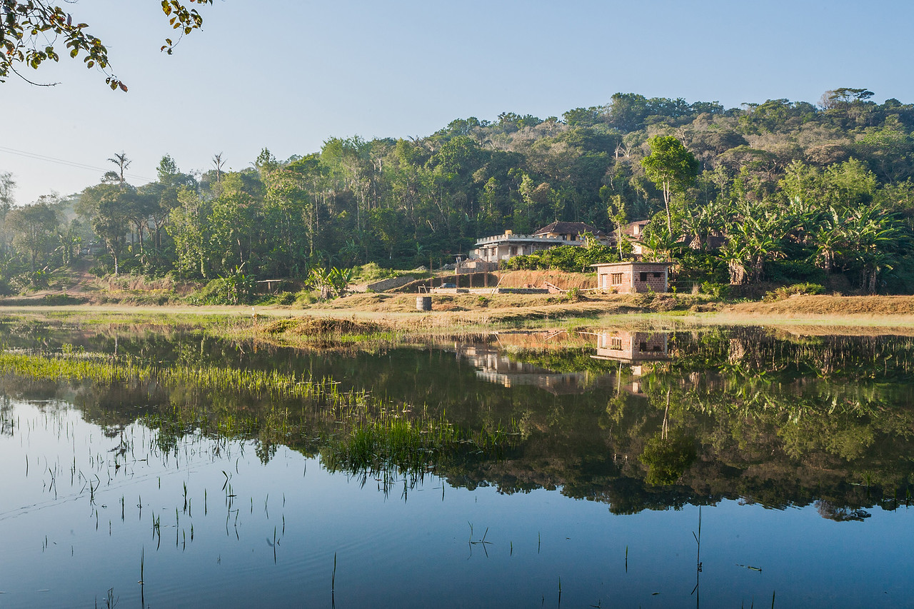 Common landscape in Coorg, Karnataka