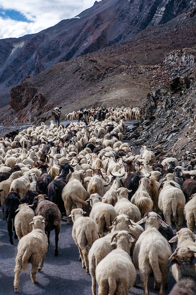 Journey from Leh to Kelong, India