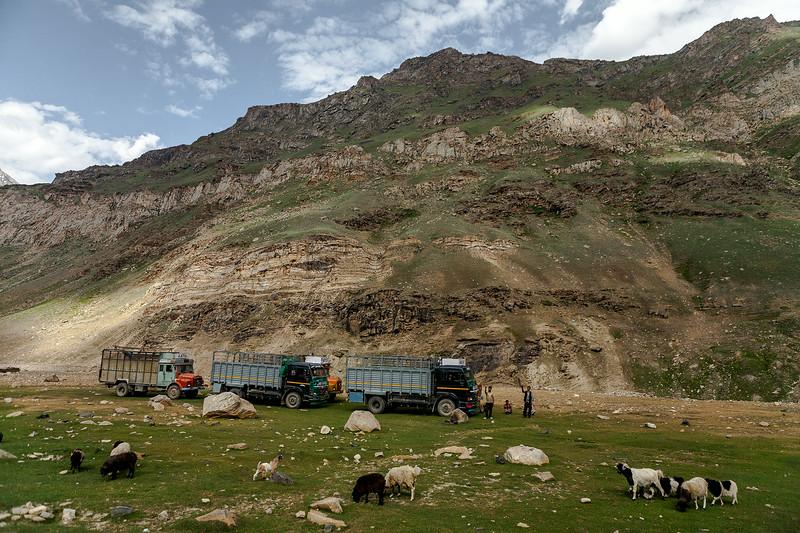 Trucks halting at the village Parkachik in Suru valley near Kargil on their way to Zanskar valley, India