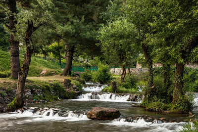 A natural spring flows in the Kokernag Botanical Garden, the biggest garden developed by the Jammu and Kashmir Tourism department, with a number of flowering plants, a rose garden and several huge chinar trees in Kashmir.