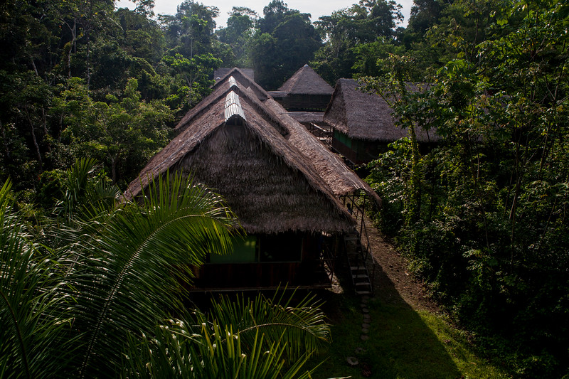 View of our lodge in the Amazon rain forest, Peru