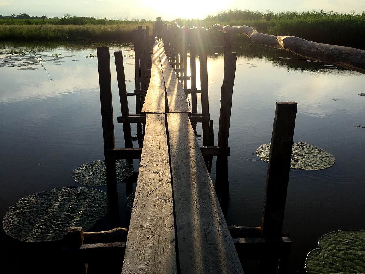 Bridge to enter the land from the Amazon river