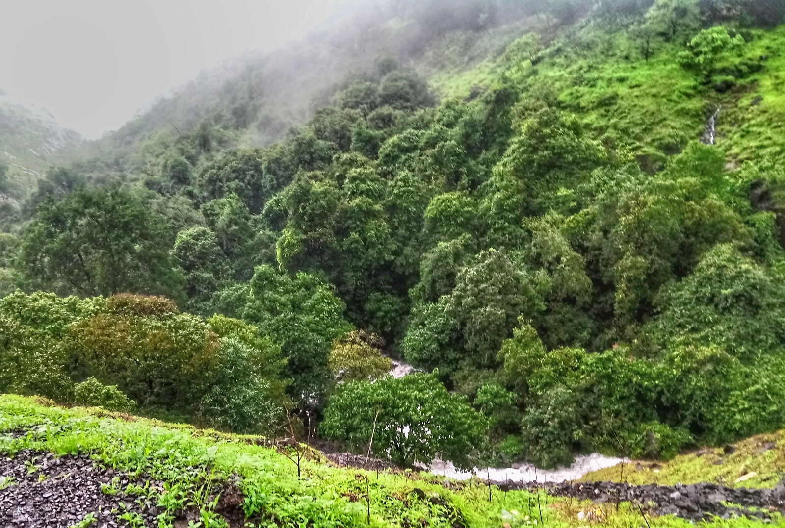 Waterfalls and green forest on the Andharban trek.