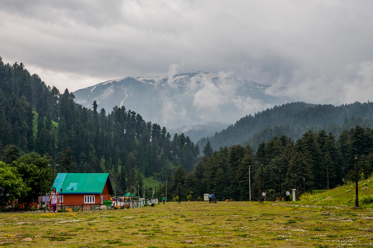 The meadows around the Aharbal waterfalls, Kashmir