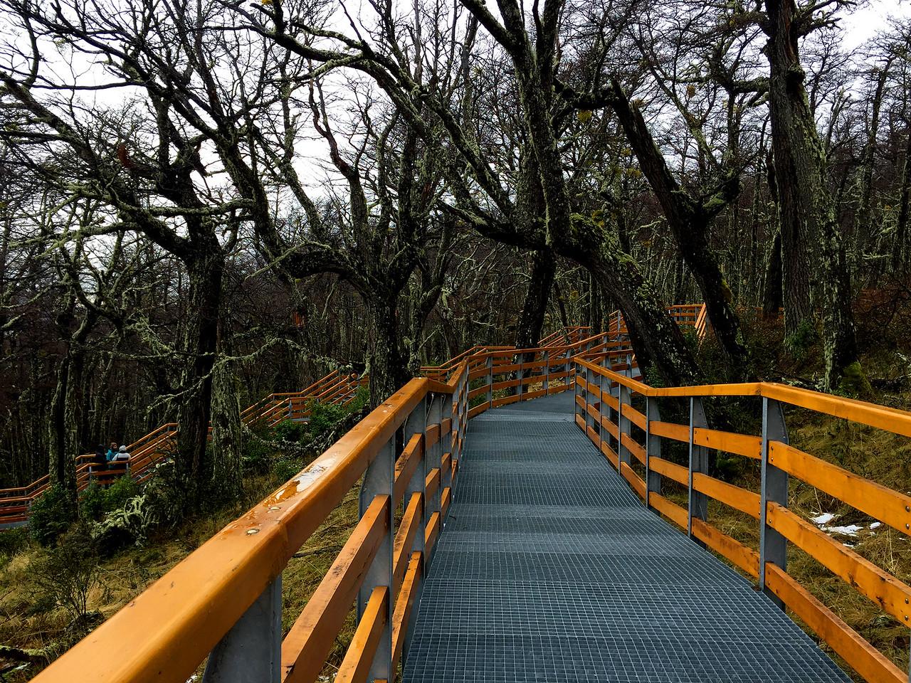 The ramps leading to Perito Moreno glacier, El Calafate, Patagonia