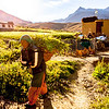 Early morning in Cha en route Phuktal, Zanskar, India
