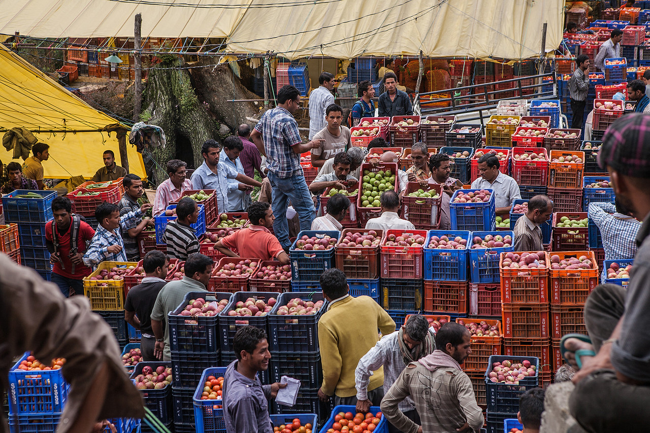 Apple market - Manali, Himachal Pradesh, India