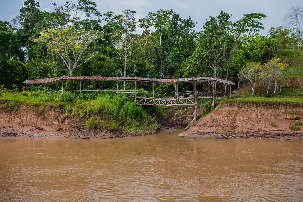 Many such bridges over the Amazon connect the village together