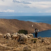Walking the the north of Isla del Sol, an island on Lake Titicaca in Bolivia