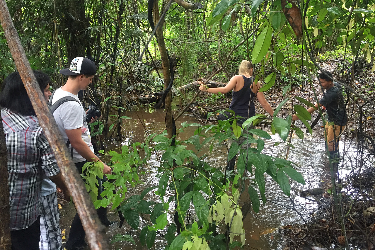 Crossing streams in the Amazon forest, Peru