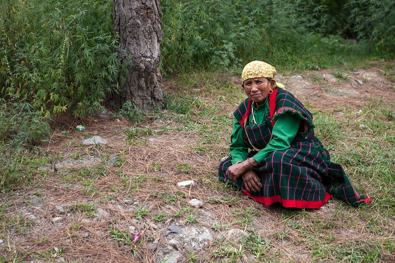 Manali, Himachal Pradesh, India; nosering