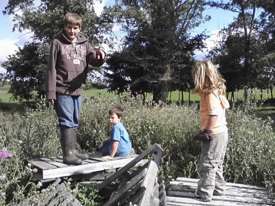 Jack, Izaak, Jr., and Ella climb on some cast-off, wooden palettes left in Ed's pasture.