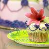009 Lily's Birthday 04 15 2012
